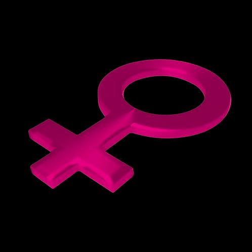 DISEÑOS DE FEMINISMO 101