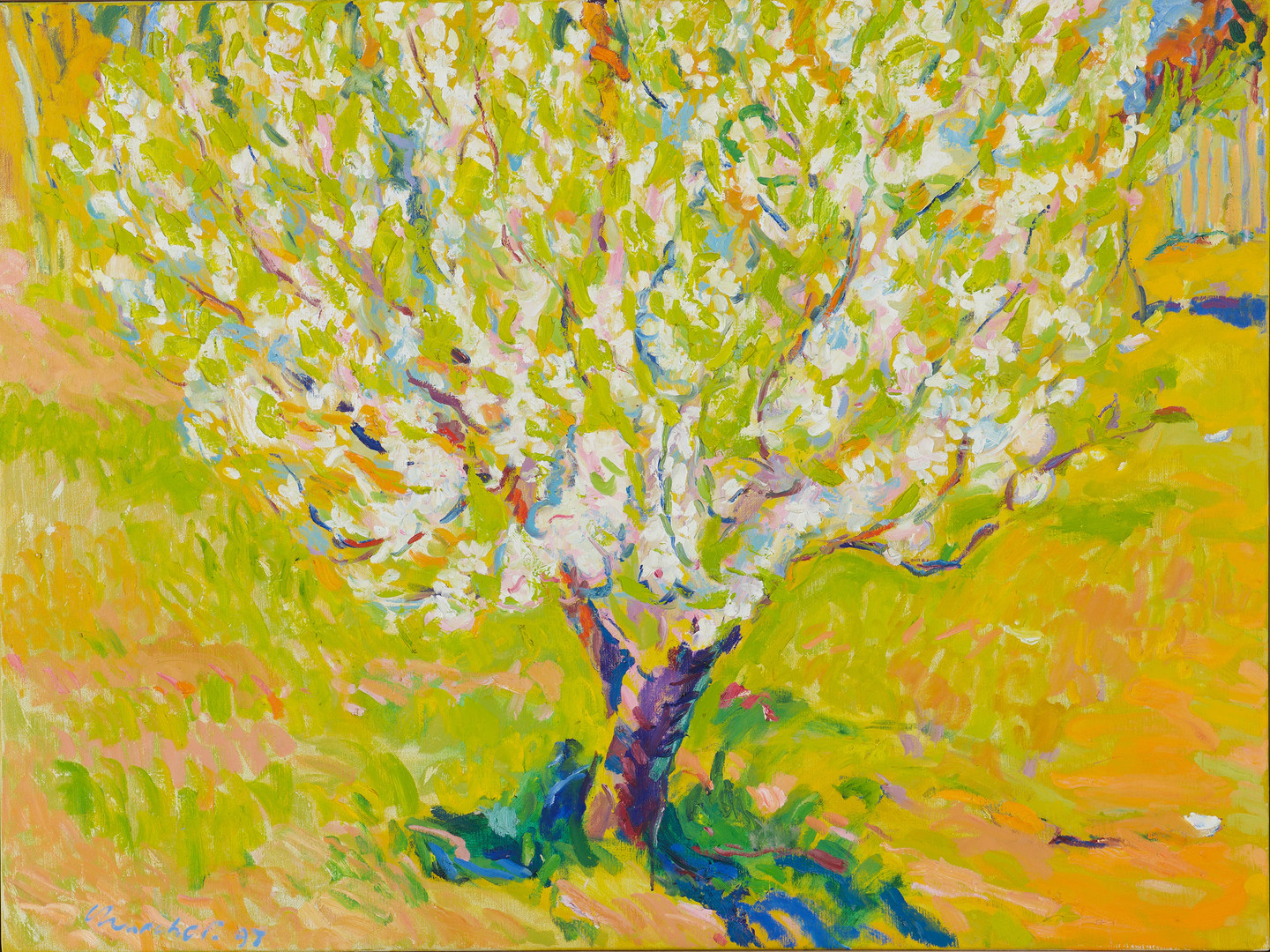 ROY CHURCHER (BRITISH, BORN 1933)  Wamboin Spring - Apple Blossom II 1997  oil on canvas  signed and dated lower left: Churcher 97  94 x 124 cm   $1200-1500