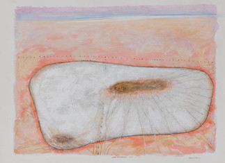 ALLEN HICKS Ghost of Warming 5 2020 acrylic on paper 56 x 76cm $520