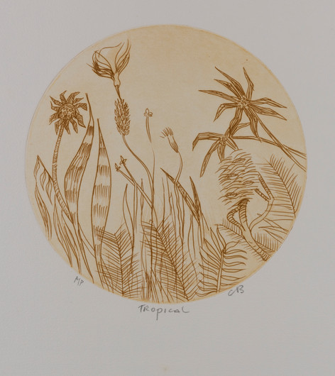 CHARLES BLACKMAN (1928-2018) Tropical etching editioned, titled and initialed lower left, centre and right on margin: AP / Tropical / CB 23.5 cm diameter (image size)