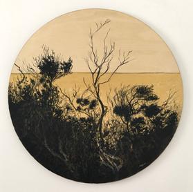 Tea Tree Silhouette