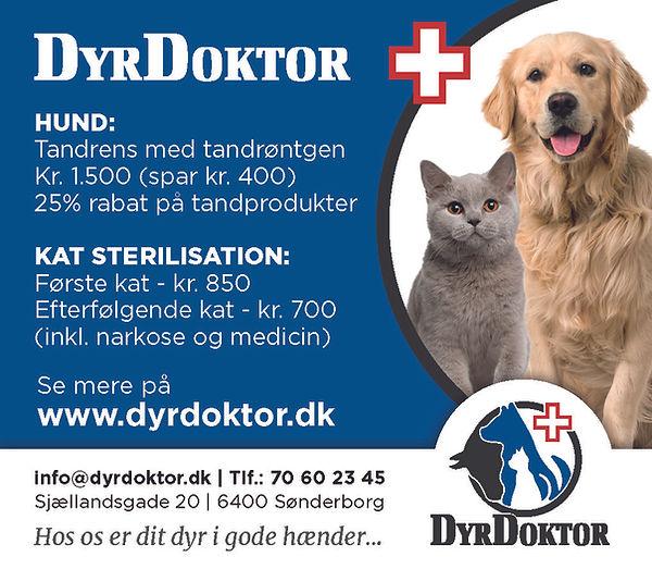 930085 - Annonce vedr. Hund og Kat[2].jpg