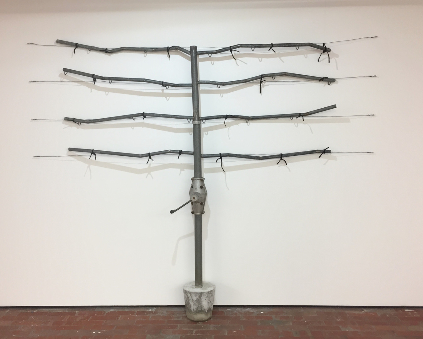Espalier 2019, DomestiCITY @ C3 Contmeporary Artspace, Abbotsford.  Hills Hoist, cotton, steel, cement.  Dimenstions Variable
