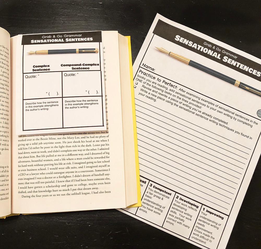 Grab and Go Grammar Foldable Reader's Notes for Any Novel