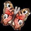 Aquarell-Schmetterling 19