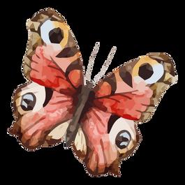 Acquerello Farfalla 19