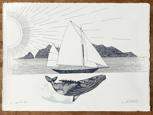 Humpback & Boat