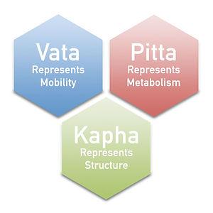 VPK Hexagons.jpg