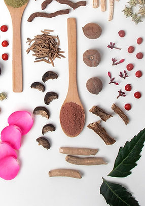 Natural Ayurvedic Ingredients.jpg