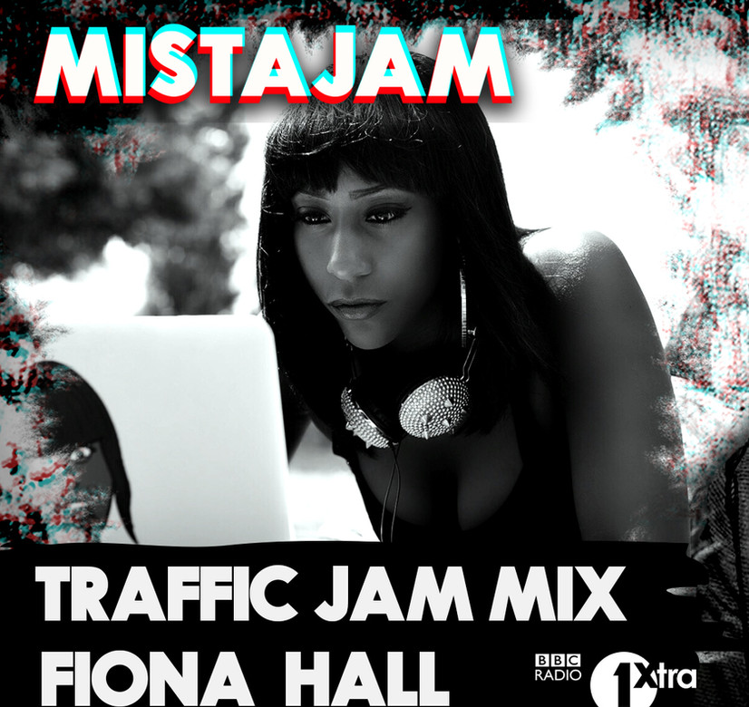 Traffic Jam Mix . Fiona Hall.JPG