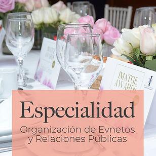 iconos web especialidad .jpg