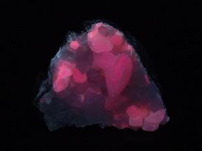 Fluorescent calcite, with quartz crystals - Estrie, Quebec, Canada