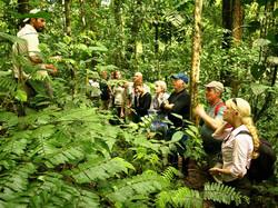 jungle_trekking