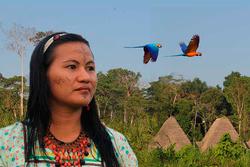 nccgirlandbirds