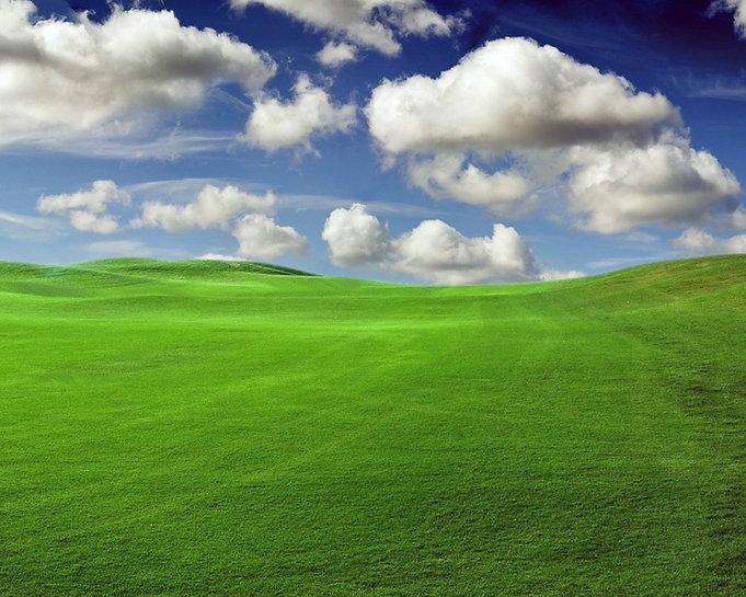 green-fields-green-wallpaper-20340138-fanpop-fanclubs.jpg