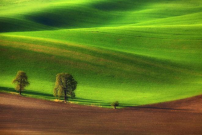 green-fields-of-moravia-12.jpg
