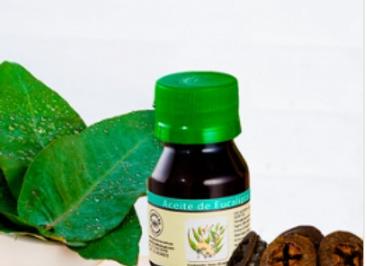 Handcrafted Eucalyptus essence, 30ml