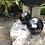 """Thumbnail: 3"""" Shungite sphere"""