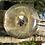 Thumbnail: Orgone I-Ching Golden Vortex