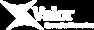 Logo Valor PNG Branco.png