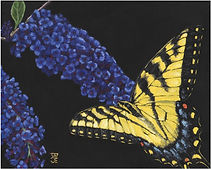 Eastern Tiger Swallowtail_small.jpg