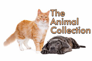 AnimalCollection.jpg