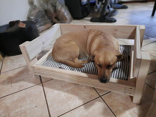 SMALL Doggy Beds