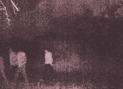 image-1-255x170_2x.jpg