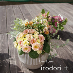 irodori+