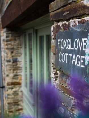Cottages Foxglove Link.jpg