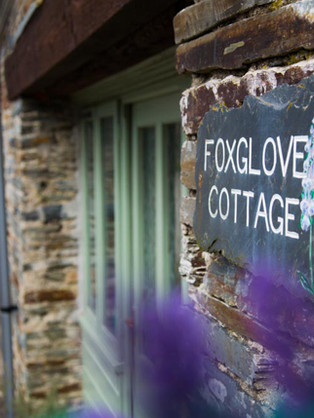 Cottages Foxglove Link.jpg