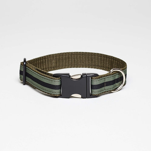 grünes Hundehalsband Nussdorf, top dog cool cat, green striped dog collar