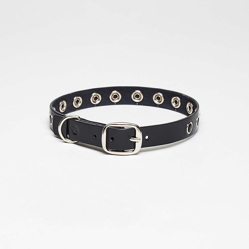 Hundehalsband Pigalle 20mm breit