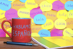 Free Spanish Social Conversation Class   May 27th, 4-4.45pm PST   Ages 8-12