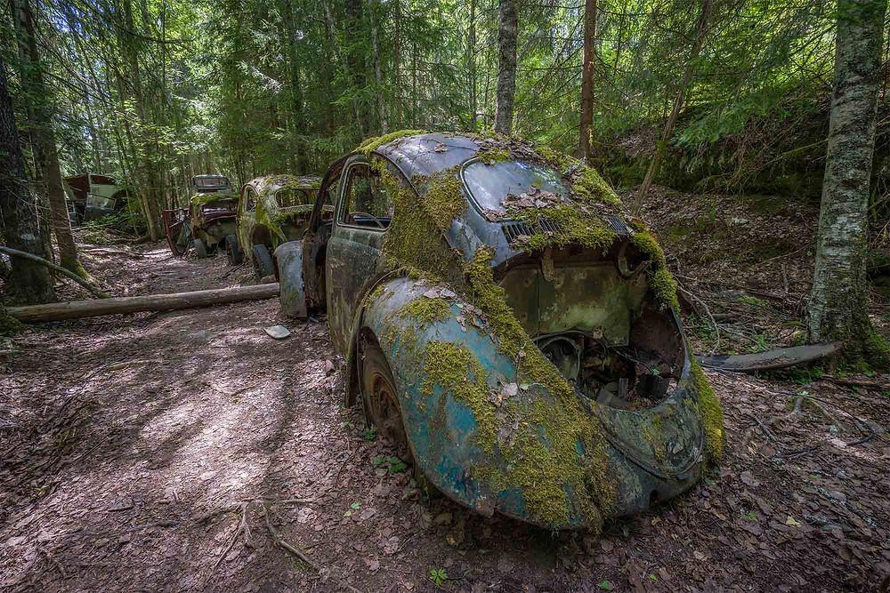 Rækker af bil på bilkirkegård i Sverige