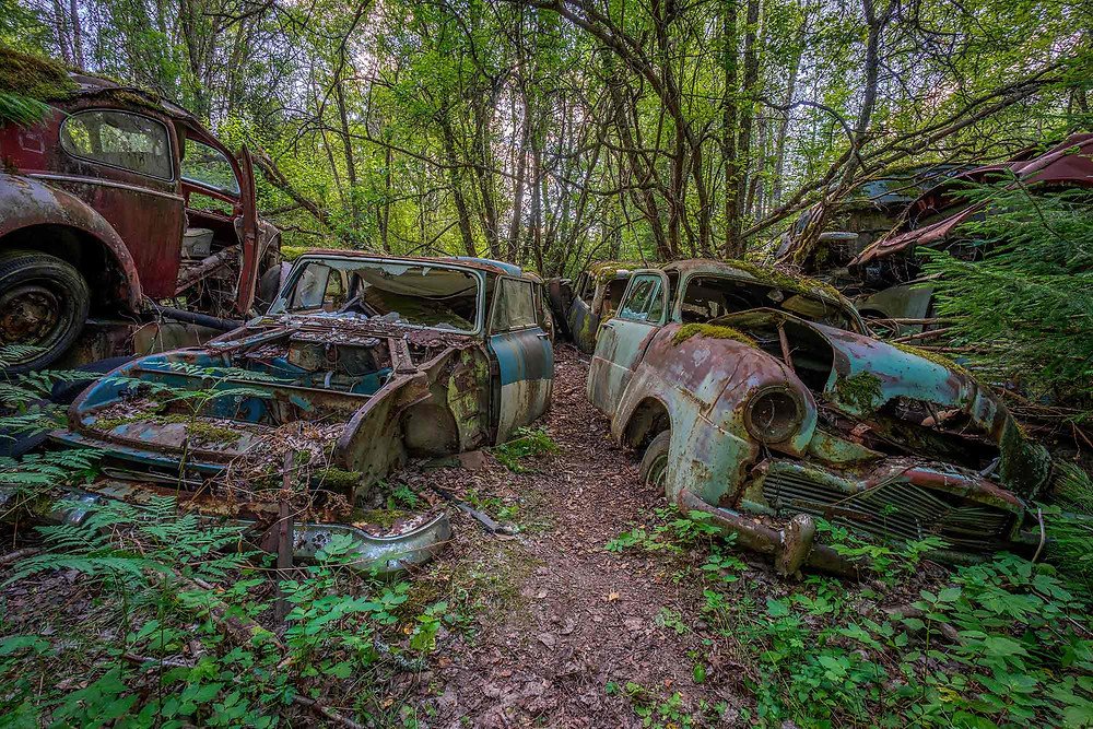 Abandoned cars in a Swedish forest