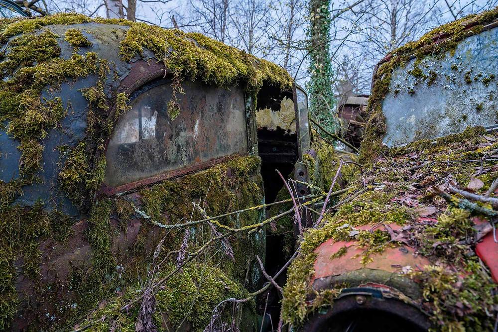 Natural decay at some abandoned cars