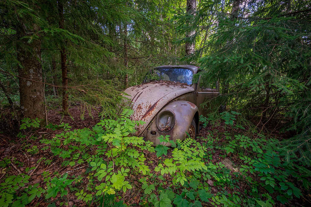 An abandoned Beetle in the woods