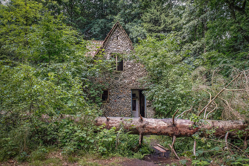 Entrance og abandoned forest house in Denmark
