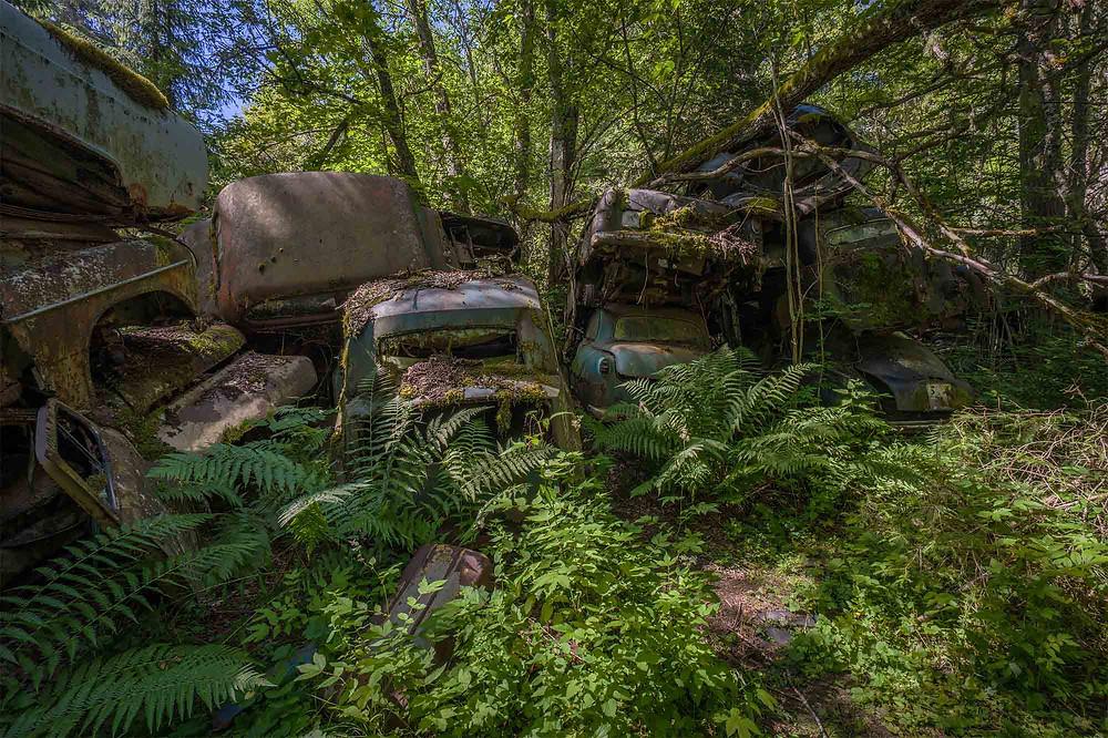 Abandoned cars in Sweden