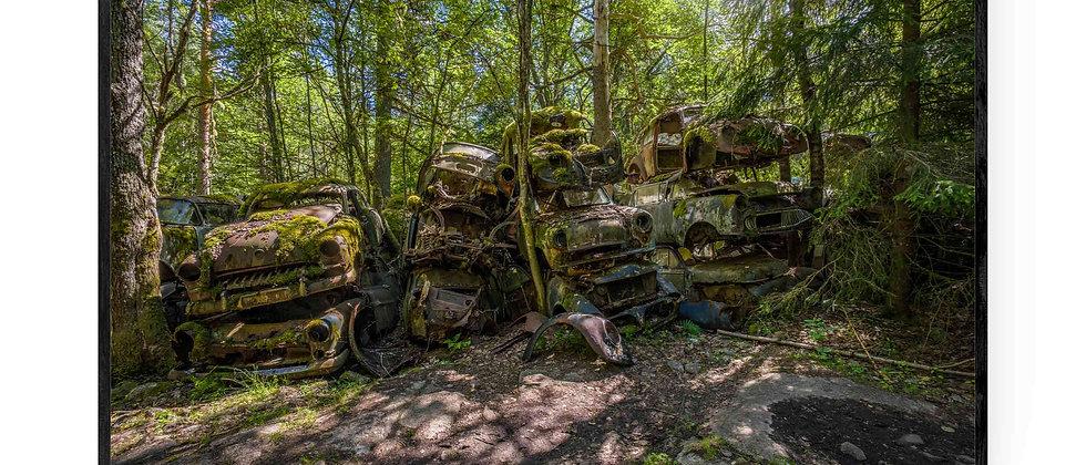 Fotokunst print af Hidden Piles in the Forest i 75x50 cm med sort ramme
