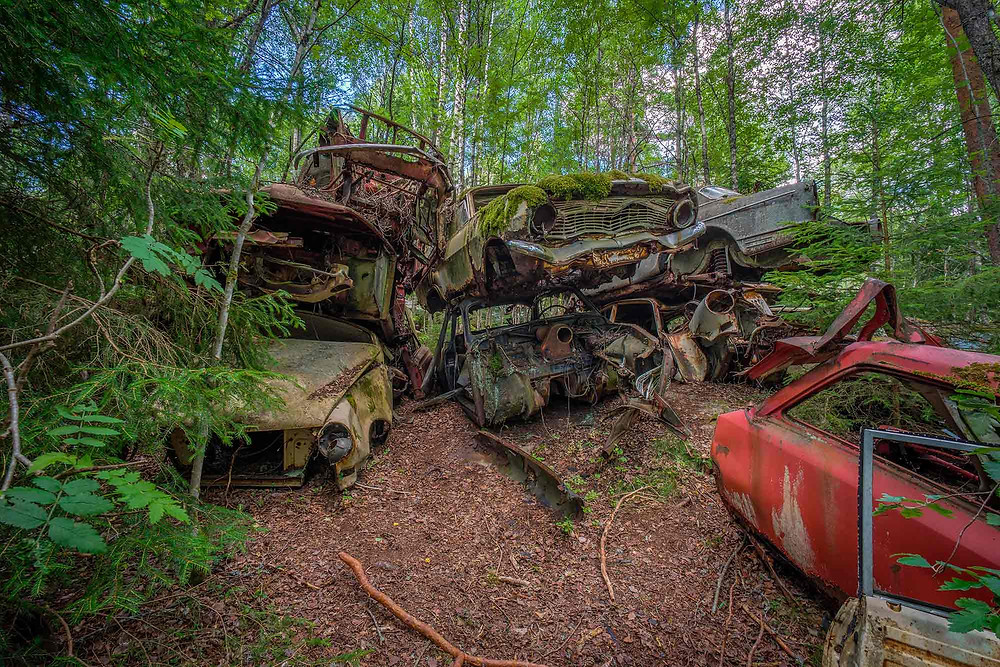 Beautiful abandoned cars in a Swedish forest