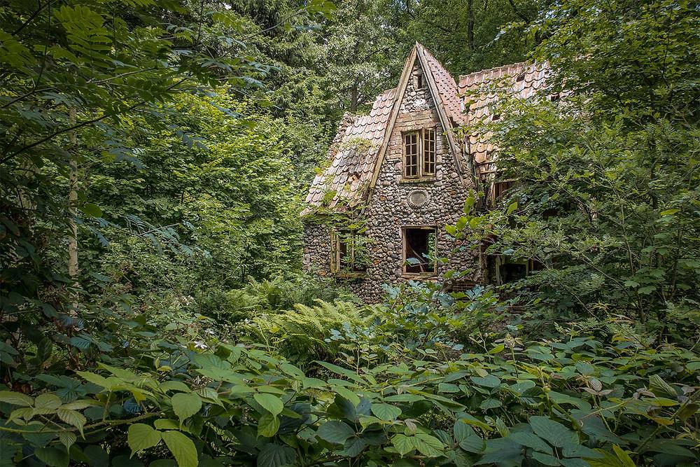 Flintholm i skoven et forladt sted i Danmark