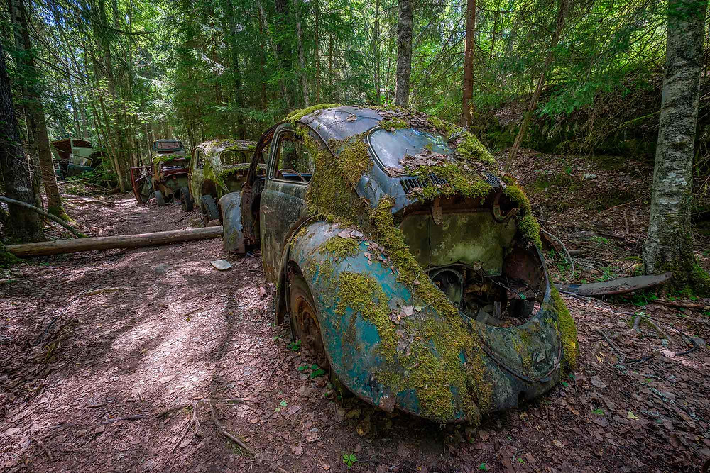 A series of fine old abandoned cars