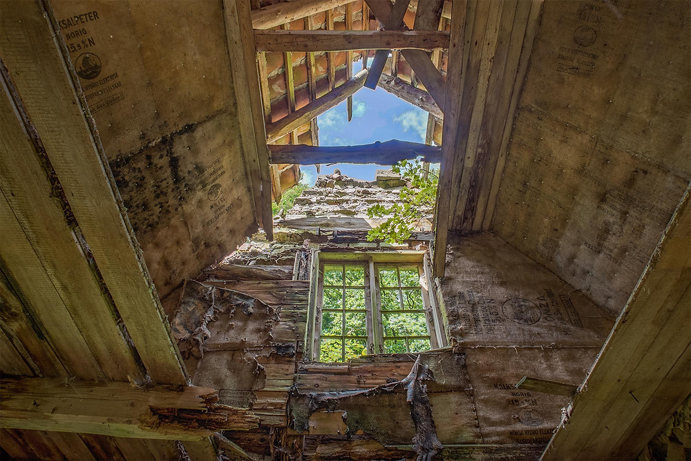first floor in the abandoned forest house