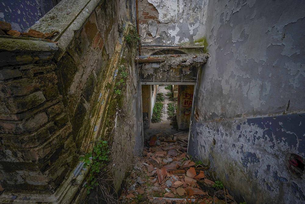 En masse naturligt forfald på dette forladte kloster