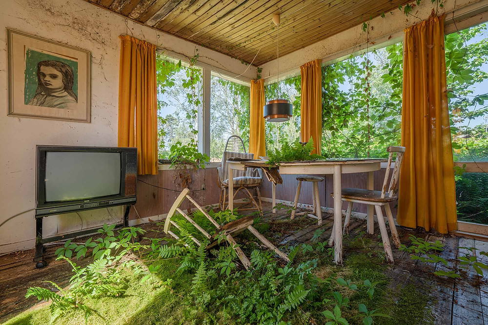 Abandoned house in Denmark - Nature takes over living room