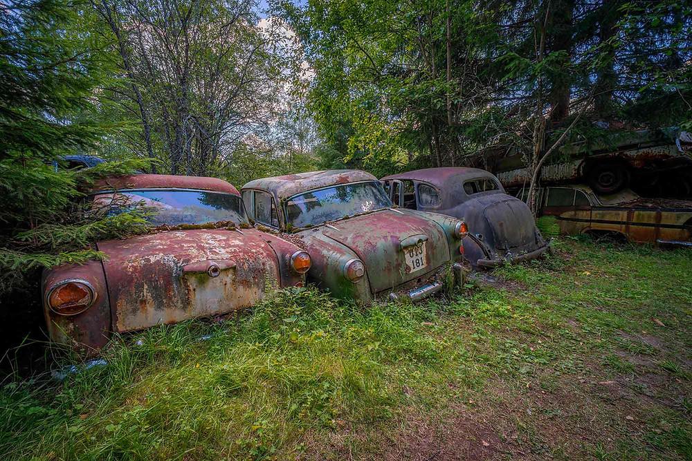 Three beautiful rusty cars