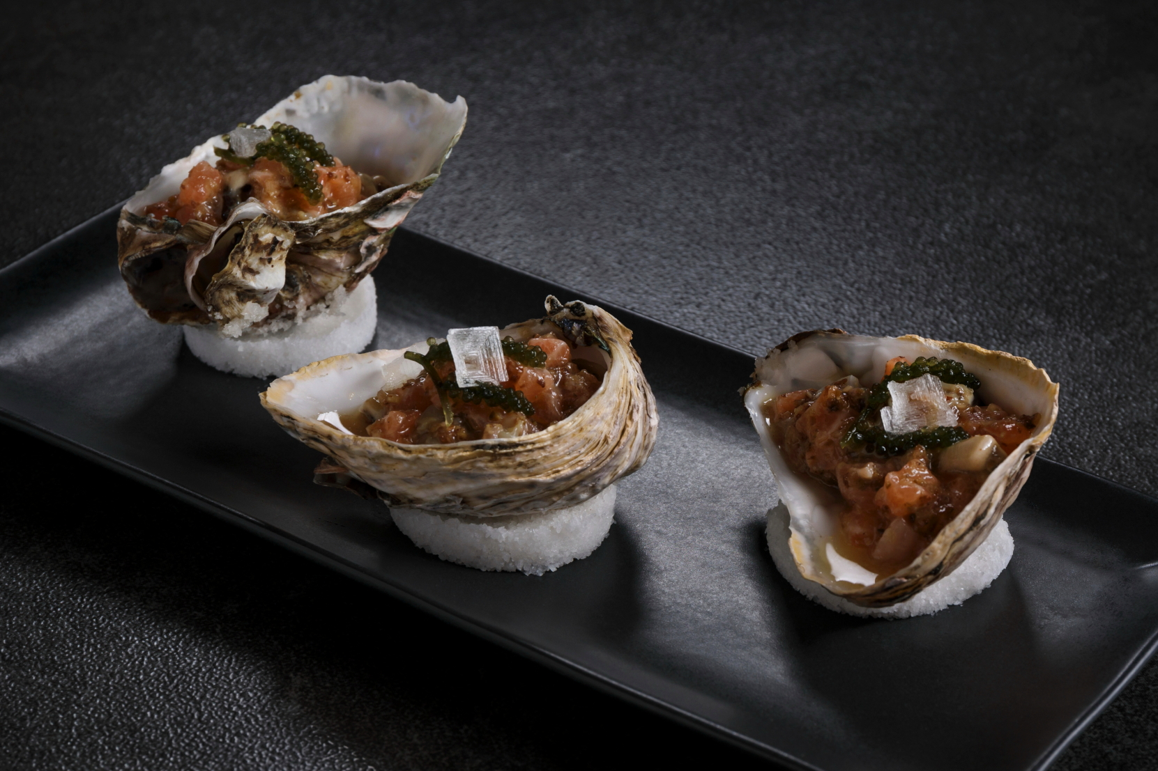 Salmon & Oyster