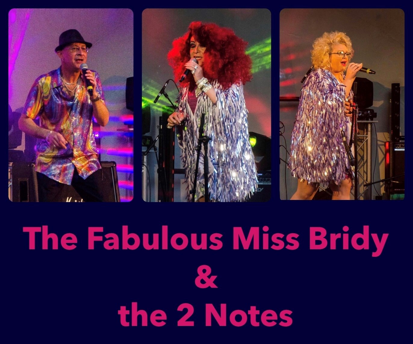 The Fabulous Miss Bridy & the 2 Notes